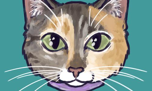 simple head avatar