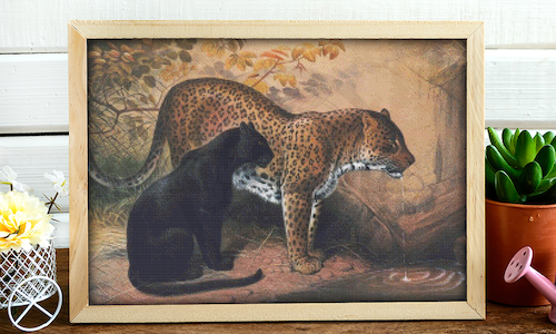 [CROSS STITCH PATTERN] The Leopard (Henry Graves, 1860s)